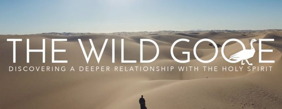 Discover a Deeper Relationship With the Holy Spirit – Wild Goose Adult Faith Formation at Immaculate Conception